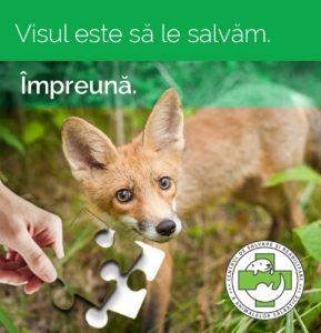 Centrul de Reabilitare pentru Animale Salbatice Visul Luanei